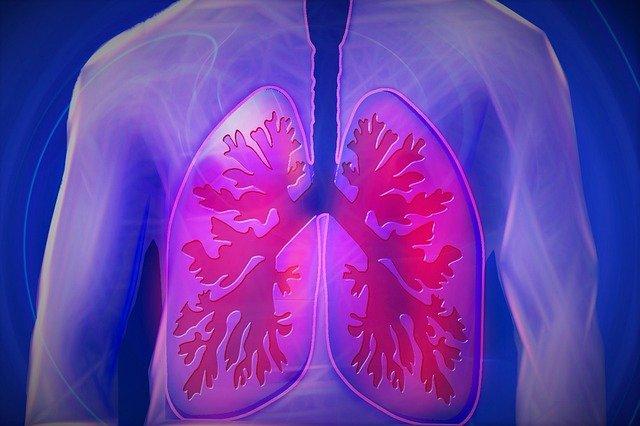Aj vaše pľúca potrebujú očistu